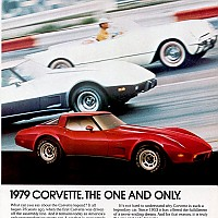 1979 corvette doku by david